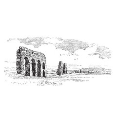Ruined aqueducts in the campagna in order vector