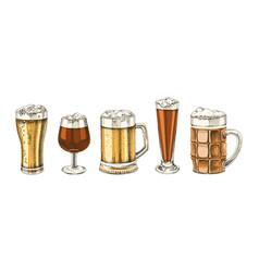set hand drawn beer glasses vector image