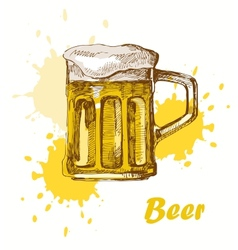 hand draw beer vector image vector image