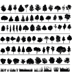 Trees bushes grass vector
