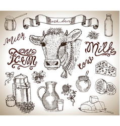 design set with cow head mild and dairy vector image