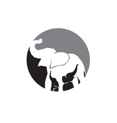 Elephant care logo designs simple modern vector
