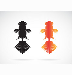 goldfish design on white background fish icon vector image