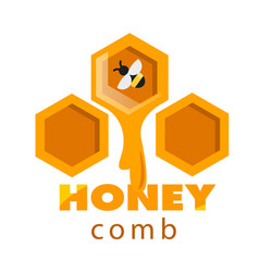 honeycomb sweet honey drop background image vector image