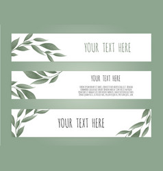 set botanic card with wild flowers leaves floral vector image