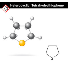 Tetrahydrothiophene chemical formulas vector