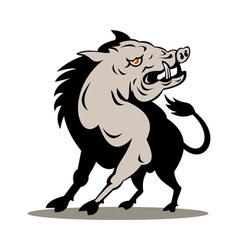 Wild pig boar attacking vector