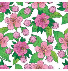 apple blossom seamless pattern vector image