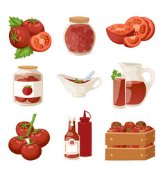 fresh tomatoes with paste isolated on white vector image