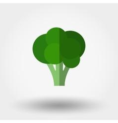 Broccoli Food icon vector image