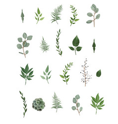 Designer elements set collection of green vector