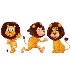 Lion set vector image