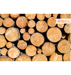 wood log background vector image