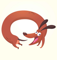 cartoon of cute purebred dachs vector image vector image