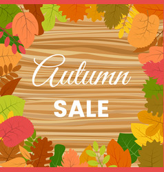 autumn leaves on a wooden table vector image