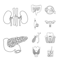 Body and human sign set of vector