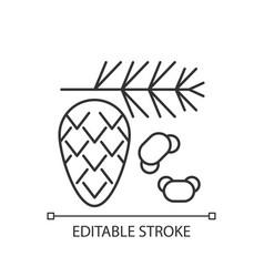 cedar and pine tree pollen linear icon vector image