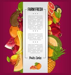 fresh organic fruit poster vector image