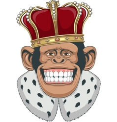 Monkey in a crown vector image