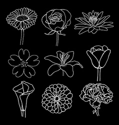 flower sketch design vector image vector image