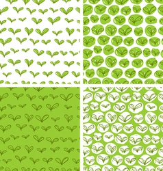 Patterns with fresh green leaves vector image vector image
