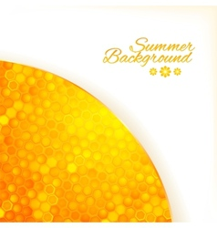 Abstract summer background with honey vector image