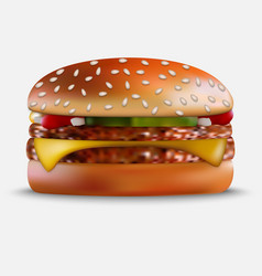 Burger on white background vector