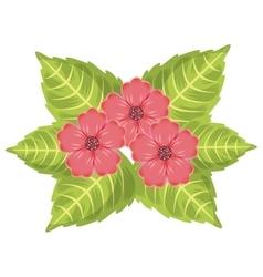 foliage of beautiful flowers design vector image
