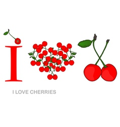 i love cherries vector image