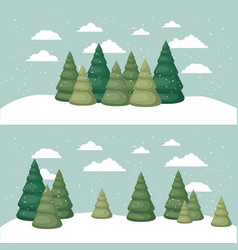 snowscape with pines scene vector image