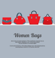 Women Handbags Display On Shelf vector image