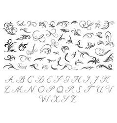 Floral pattern and initials vector image vector image