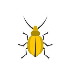 yellow beetle icon flat style vector image vector image