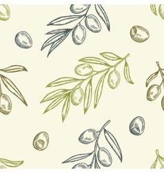 Olive seamless pattern Hand drawn vector image vector image