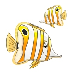 Cartoon tropical marine butterflyfish character vector image vector image