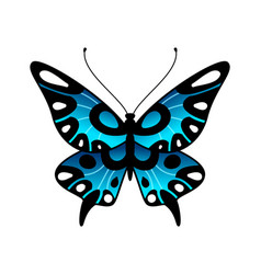butterfly colorful stylized summer flying insect vector image