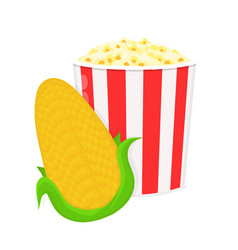 corncob and bucket of popcorn flat vector image