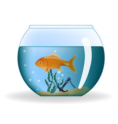 Goldfish in round aquarium vector
