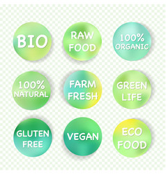 Green eco symbol set healthy food badge vector