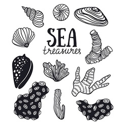 Grunge backgroung with sea treasures - corals vector