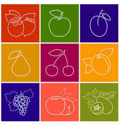 Linear fruit berry icons vector