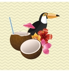 Tropical design bird concept nature icon vector image