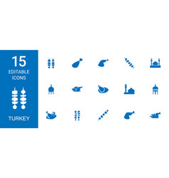 Turkey icons vector