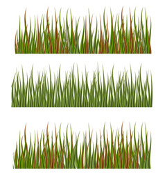 green grass borders set nature lawn meadow spring vector image vector image