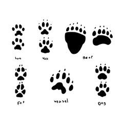 animal tracks vector image