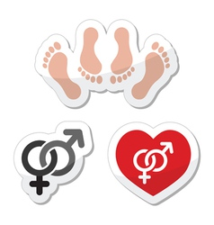 Couple sex making love icons as labels set vector image vector image