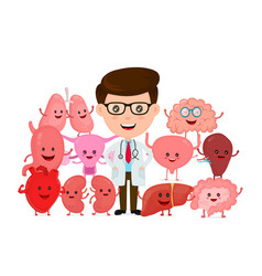 doctor with human internal organs vector image