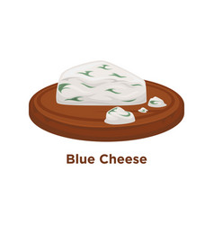exquisite expensive blue cheese triangular piece vector image