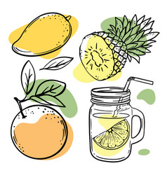 multi-fruit smoothies fresh juice vector image