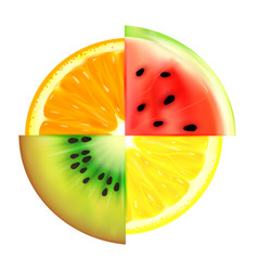 summer fruit slices in a circle isolated on white vector image